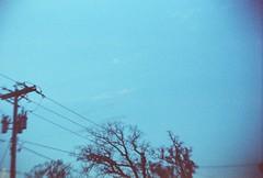 branches, power lines (Amy Fichter) Tags: autumn trees sky fall wisconsin 35mm evening xpro crossprocessed october fuji dusk walk branches slidefilm powerlines tungsten 2010 64t menomoniewisconsin expiredfilm2006 fujifilmfujichrome64t gakkenflex warmeveninginoctober