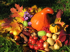 Autumn colors ...Thanksgiving...Erntedankfest...A wonderful sunday for my dear friends ! (Colliefan) Tags: thanksgiving park autumn friends light red portrait food sun color macro green fall halloween nature colors fruits beautiful vegetables leaves yellow canon germany garden season pumpkin fun deutschland licht photo yummy potatoes cool nice corn colorful photographie tomatoes sunday herbst natur vivid award blumen apples grn flickrcentral multicolored bltter autunno colori bunt frankfurtammain naturesbest erntedankfest delightful gemse 2010 ernte vitamine harvestfestival natureart pfel beautifulcapture naturkunst supereco niddapark colliefan beautiflower zierfrchte
