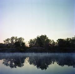 (druszaj1) Tags: morning autumn mist lake newyork reflection 120 6x6 film water sunrise mediumformat buffalo squareformat greategret whitebird greatwhiteegret greatwhiteheron sunny16 epson4490 minoltaautocord tifftnaturepreserve diycolor commonegret rokkorlens 101010 kodakportranc160