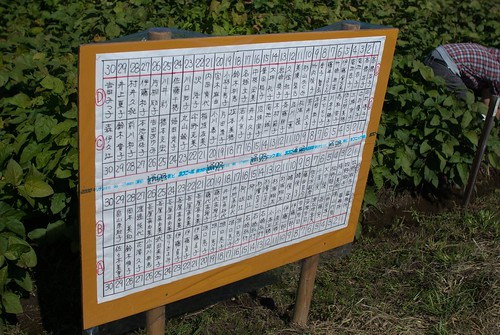 20101011-104742-007-sm