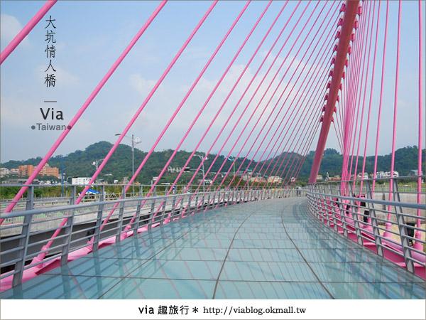 【大坑情人橋】新的台中約會景點~浪漫粉紅色情人橋12
