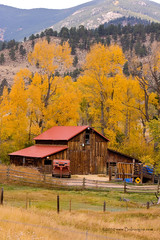 Rocky Mountain Barn Autumn View (Striking Photography by Bo Insogna) Tags: autumn trees red green fall nature yellow rural season landscape photography gold golden colorado colorful gallery forsale decorative fineart country rustic barns scenic wallart fallfoliage galleries posters stockphotos co aspens rockymountains striking stockimages cottonwoods highcountry strikingphotography nothingbutthebest coloradonaturephotography boinsogna thelightningmancom strikingphotographycom insogna thelightningman jamesinsogna buybarnprints