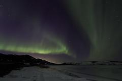 Aurora Borealis (fridgeirsson) Tags: island lights iceland islandia aurora northern ísland borealis islande izland nordlys islanda auroras naturesfinest nordlicht norðurljós islanti 冰島 specnature islàndia איסלנד исландия アイスランド islandija 아이슬란드 ισλανδία आइसलैंड أيسلندا ysland ประเทศไอซ์แลนด์ vanagram ایسلند исланд