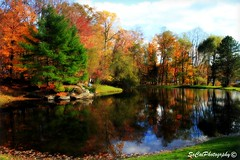 Scotrun in Autumn (socalgal_64) Tags: autumn trees sky lake mountains fall nature leaves clouds reflections landscape colorful natural pennsylvania pa poconos picturesque scotrun platinumphoto artistoftheyearlevel3