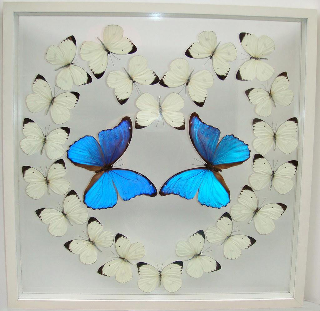 White Butterfly Heart Decor Ideas in White Frame