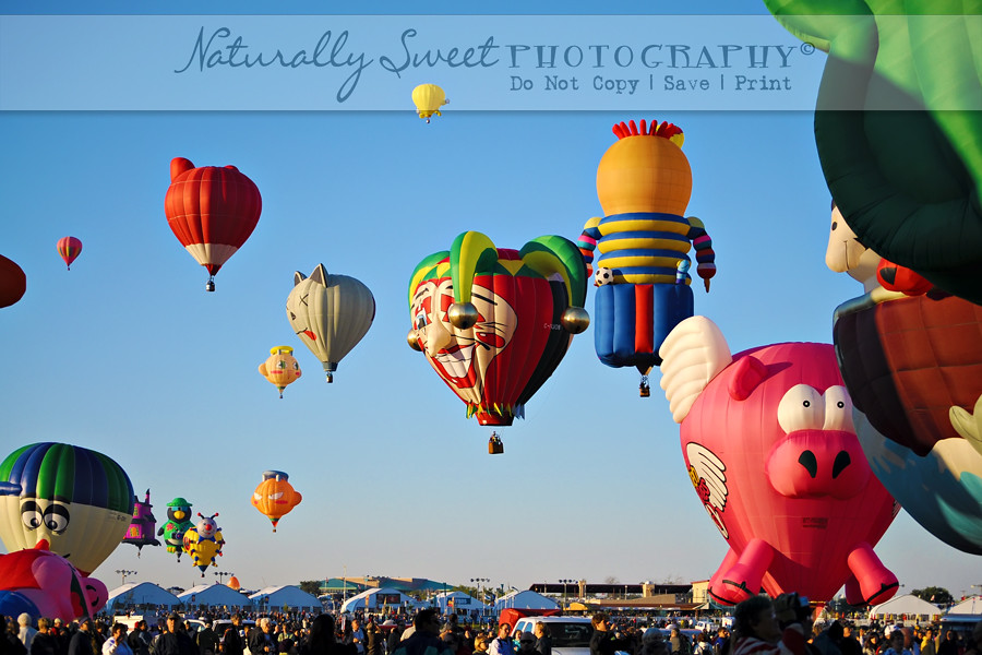 balloon fiesta 10-10 rs