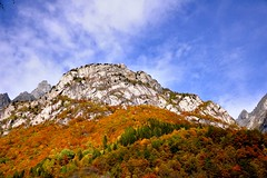 pennellate d'autunno (Princess Sissi) Tags: circolofotograficopaullese