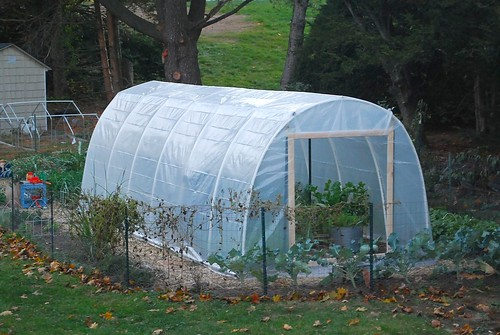 Building hoop house 15