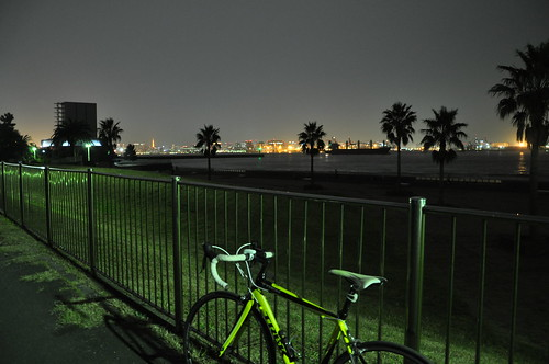 2010.11.13_城南島海浜公園etc_055