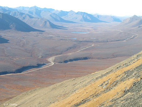 The Demspter Highway winds through Tombstone Territorial Park 514