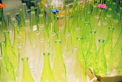 (super_tina) Tags: green film ikea glass shanghai miranda solaris bytina  solaris400  mirandaee flowerglassgreen