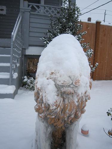 November Snow 2010 021