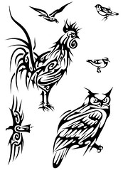 BIRDS (Black Crown . tribal) Tags: white black bird art design arte seagull tribal owl rooster condor tatoo ilustration passaro jewel joia