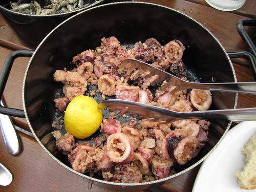 Dubrovnik 0340 calamari