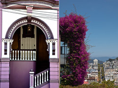 walking san francisco (flamed) Tags: sanfrancisco california city travel plants usa architecture stairs bush diptych purple mexican spanish hedge views latin pillars heights