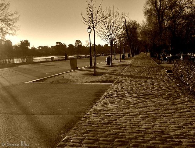 (275) Un paseo matinal