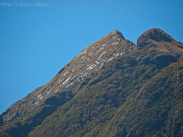 Fiordland-240