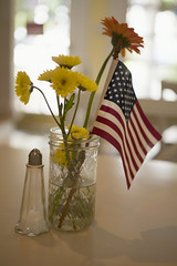 Happy 4th of July! (WilliamND4) Tags: 4thofjuly flag flowers vase table salt