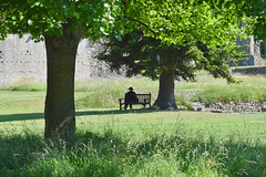 Women with Hat Sitting Under Tree