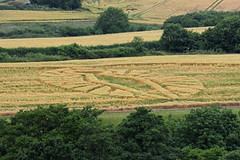 Crop Circle (Roy Lowry) Tags: cerneabbas gianthill barley cropcircle