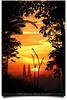 "Finally We Are Taller Than KLCC! (Unedited!) (AnNamir™ c[_]) Tags: trees sunset building silhouette canon eos kitlens explore malaysia 7d handheld kualalumpur silueta kl siluet klcc ampang senja 135mm pokok wow1 wow2 wow3 wow4 18135 maghrib wow5 explored wowhalloffame areyouready flickraward platinumheartaward simplysuperb goldstaraward bukitampang luarbiasa annamir puteracom sahabatsejati getokubicom bukittinjau digitalmukmin 1malaysia bestcapturesaoi mygearandme mygearandmepremium mygearandmebronze mygearandmesilver mygearandmegold klnatureouters klno mygearandmeplatinum ""flickrawardgallery ringexcellence dblringexcellence gettyimagesmalaysia rememberthatmomentlevel1 rememberthatmomentlevel2 vigilantphotographersunite vpu2 vpu3 vpu4 vpu5 vpu6 infinitexposure"