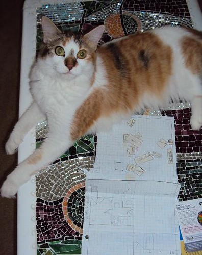 7-30-10-Abby-Decorating-software