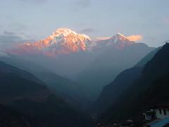 Sunrise at Landrung (J Chau) Tags: nepal yak snow sunrise dusk south hill tibet ama kathmandu bazaar poon himalaya yeti khumbu everest pokhara sherpa kala cho annapurna shankar thar kang lukla lhotse nuptse oyu khumjung basecamp thamserku makalu fishtail gokyo beni namche tatopani icefall sirdar chomrong dablam patar tengboche sagarmatha tadapani chomolangma lobuche dhaulagiri pheriche machhapuchhre pumori ghorepani cholatse landrung kangtega ghauri melungtse changtse hiuchuli kyachung taweche