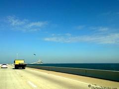 09022010594-North-I275-Tampa-Bay