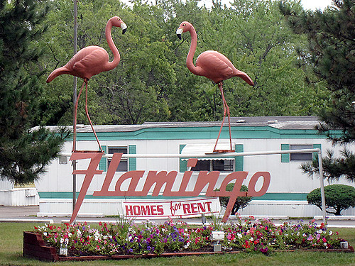 flamingoTrailer