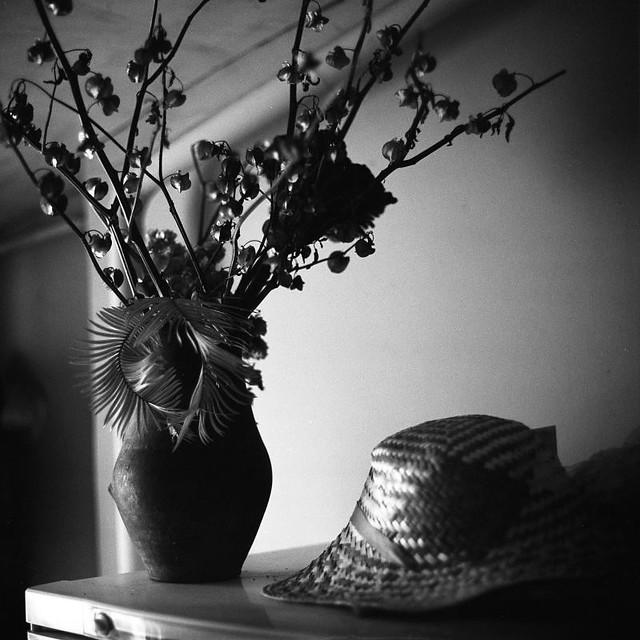 дачный натюрморт / cottage still life