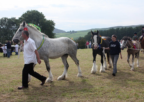 Shires in the Grand Parade
