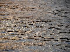 golden water (transloid) Tags: sunset sea summer sky meer wasser waves sonnenuntergang sweden stockholm sommer schweden himmel archipelago wellen
