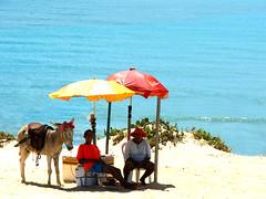 Enquanto isso... (...anna christina...) Tags: praia nature brasil natureza annachristina abigfave annachristinaoliveira