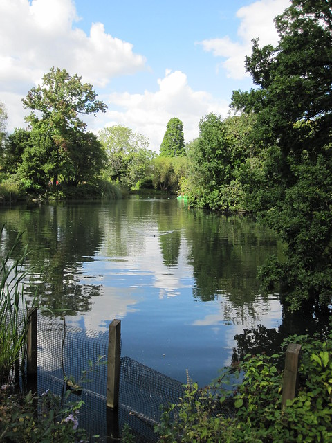 The lake in Dulwich Park