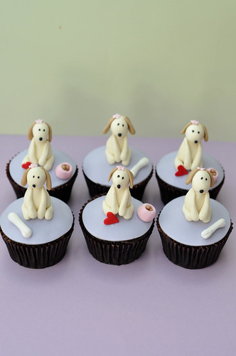 Puppy on cupcakes