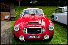 Austin Healey 3000 MKII (1961) (E82W) Tags: auto car austin deutschland nikon schloss 3000  healey 1961 mkii   d90 bensberg
