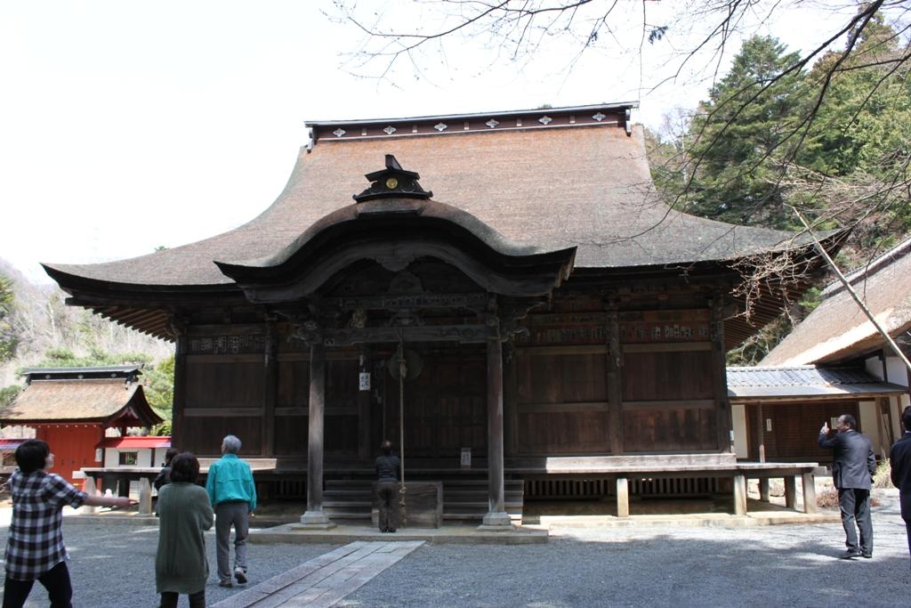 Sakura tour in Yamanashi (10)