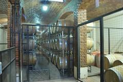Museo Santiago Graffigna 698