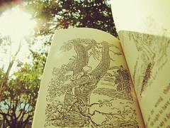 Christopher Robin (barbara carneiro) Tags: trees book pooh winniethepooh livro ilustração árvores aamilne ehshepard babileta
