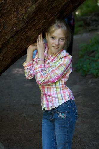 Tree Holder