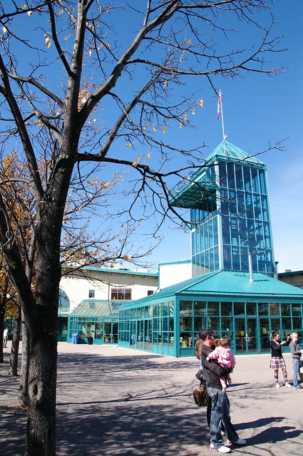 加拿大遊學日記2