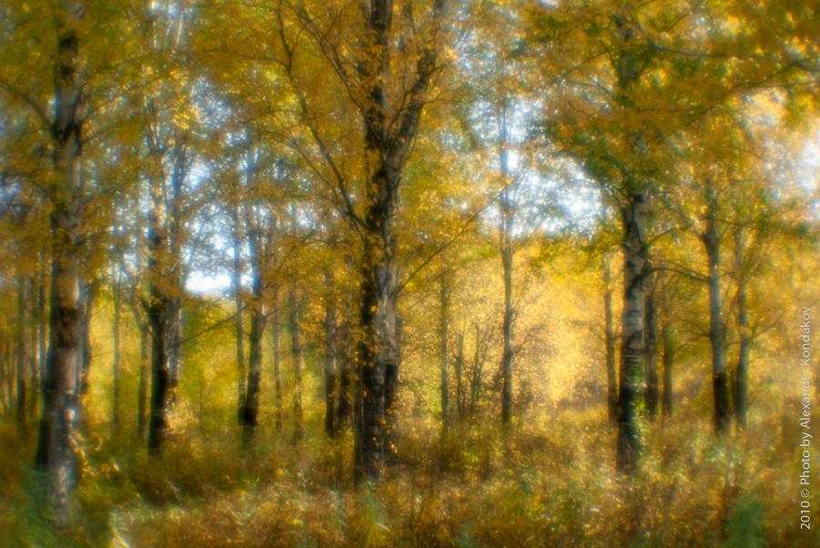 Осень, монокль