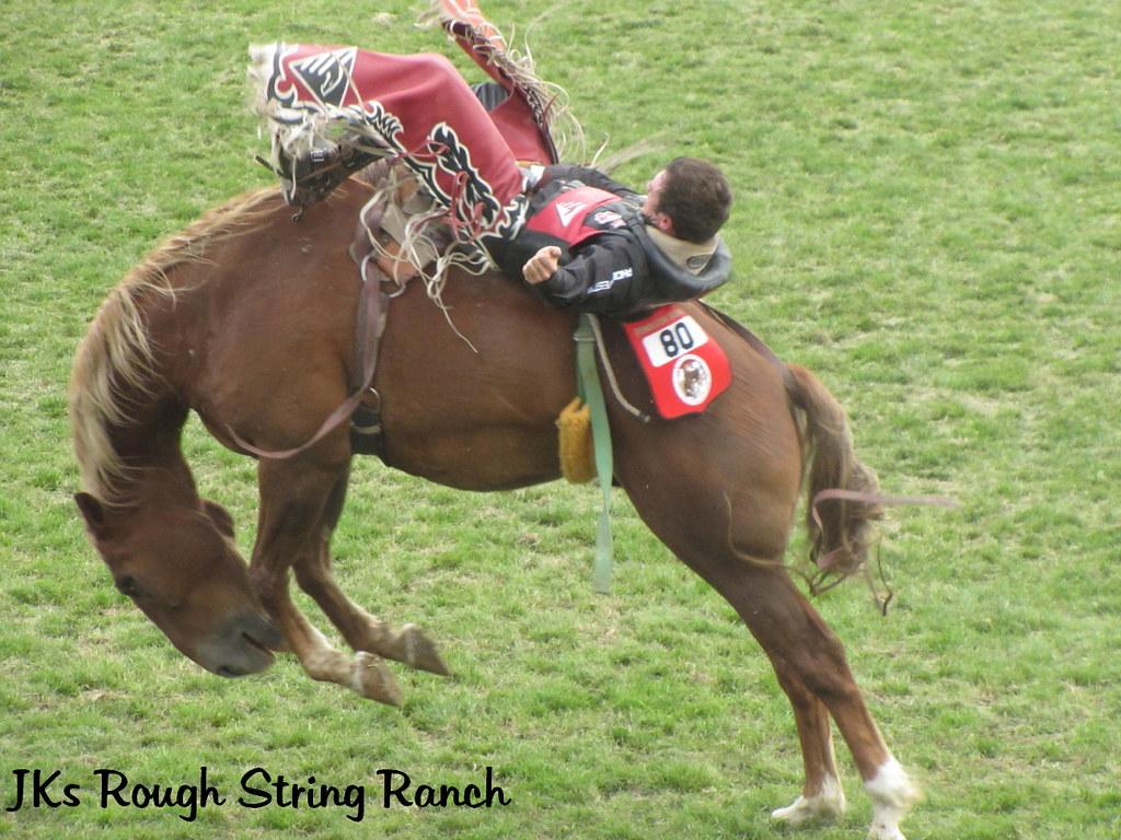 Ride that Bronc!