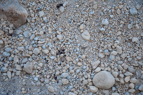 Rock Driveway Texture