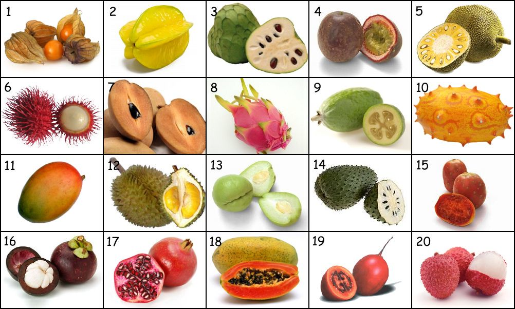 Tropical Fruit Names I...