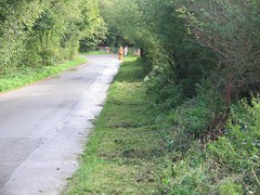 Cleared verges along Bond Lane