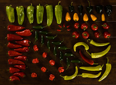 It's hot! (haban hero) Tags: red hot color crimson cherry pepper bomb jalapeno habanero hungarian
