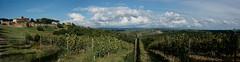 Villa del Monte Panorama (mattrkeyworth) Tags: italien italy panorama clouds landscape italia sony wolken tuscany villa toskana grapevines landshaft a900 pancole sonya900 sonydslra900 mattrkeyworth villadelmonte