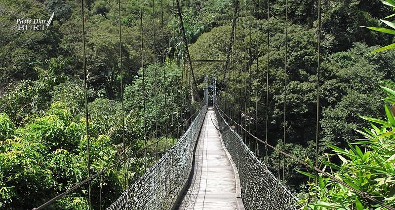 一號吊橋002