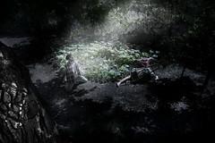 Vocation (Mario Cusimano) Tags: dark rosso luce ragazza bosco cusimano grottesco